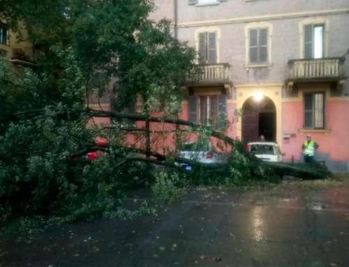 Grandinata a Modena, come segnalare i danni al Comune